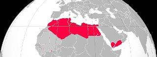 L'impensabile avvenuto: il mondo arabo vuole diritto