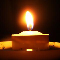 candela-thealieness.jpg